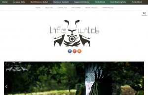 LifeOFWilds.com